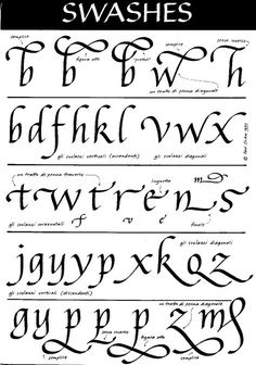 Italic Swashes … Handwriting Analysis, Nice Handwriting, Calligraphy Handwriting, Calligraphy Letters, Typography Letters, Penmanship, Calligraphy Tutorial, Calligraphy Drawing, Calligraphy Practice
