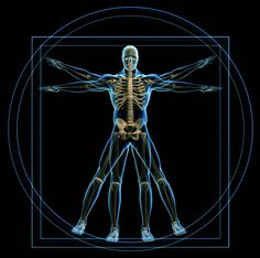 This is a reinterpretation of Leonardo da Vinci's work ' The Vitruvian Man,' in which the aesthetic of the golden ratio is well represented. pinterest.com