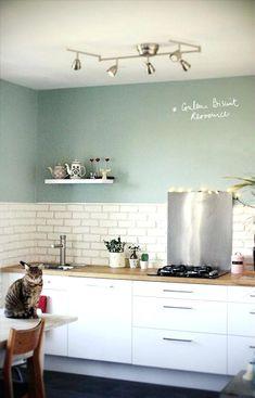 Kitchen:Kitchen Paint Colors Painted Kitchen Cabinet Ideas Grey Color For Kitchen Walls Most Popular Color To Paint Kitchen Cabinets Best Kitchen Wall Colors Color For Kitchen Walls Kitchen Wall Colors, Kitchen Paint, New Kitchen, Vintage Kitchen, Mint Kitchen Walls, Kitchen White, Loft Kitchen, Cheap Kitchen, White Kitchens