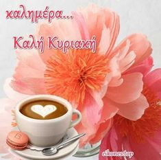 Morning Greetings Quotes, Good Morning Good Night, Morning Wishes Quotes