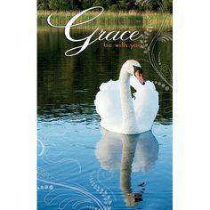 Bulletin-Grace Swan (Pkg-50)