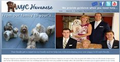 Launched a new website for this breeder of Havanese in New York City - Queens, NY