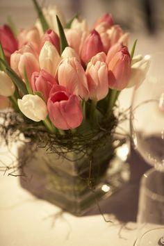 Tulpen Arrangement