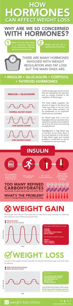 U Weight Loss Clinics – Infographic – How Hormones Can Affect Weight Loss