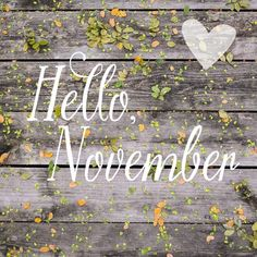 """*~ Welcome Sweet November! ~*"