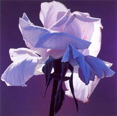 Lilac rose by Ed Mell: History, Analysis & Facts Lilac Flowers, Flowers Nature, Beautiful Flowers, Watercolor Landscape, Watercolor Flowers, Watercolor Paintings, Love Painting, Light Painting, Art Floral