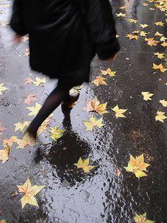 Bonjour Paris a quintessentially Parisian moment. A flash of black coat, black tights and black shoes moving swiftly down a rain-slick Boulevard Saint-Germain.  September 9, 2012