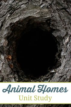 Animal Homes Unit Study - #Animal #Habitat  #UnitStudy #Homeschooling