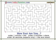 How Fast Are You To Solve The Puzzle Funny Puzzles, Signs, Maze, Funny Riddles, Novelty Signs, Labyrinths, Signage, Dishes, Sign