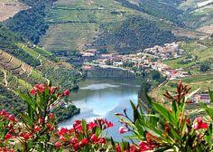 Pinhão (Alijó) Rodeada pela beleza sublime do Douro, no concelho de Alijó, fica a vila do Pinhão, repleta de história ligada ao melhor vinho do mundo, o vinho do Porto.