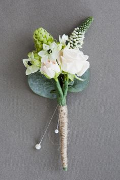 this one plus mini succulent
