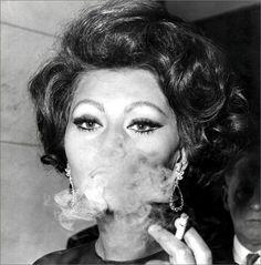 Portrait of Sophia Loren, 1960's