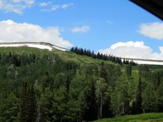 Manti La Sal National Forest 7-8-14  That would be snow on the mountain tops in July....for those of us from TX, that's crazy.