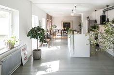 le piante vive, il muro in mattoncini, il parquet in legno e i colori del salotto donano a questo ambiente un aspetto molto piacevole e viene voglia di soggiornarci.