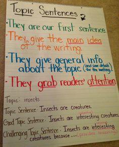 topic sentence anchor                                                                                                                                                                                 More