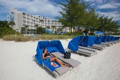 Guy Harvey Outpost A Tradewinds Beach Resort St Pete S Getaway Florida