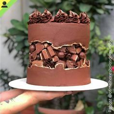 Looking for a great dessert for completing your meals at home? This is quick and simple best three chocolate cake recipes ready to serve you at home. Oreo Cake, Cake Cookies, Bolo Glamour, Food Cakes, Cupcake Cakes, Cactus Cake, Bon Dessert, Dessert Table, Homemade Donuts