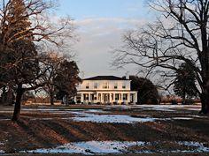 Magnolia Manor - Halifax County, NC