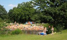 zwemmen > Camping De Roos
