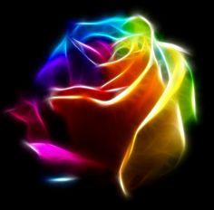 Rosa Colorida. http://www.frutodearte.com.br