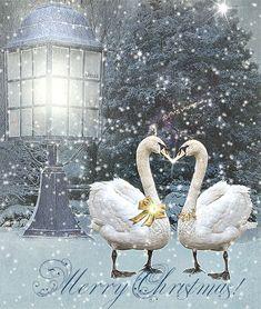 christmas wishes - 312366924147834249 Merry Christmas Gif, Merry Christmas And Happy New Year, Cozy Christmas, Christmas 2017, Country Christmas, Christmas Wishes, Christmas Pictures, Holiday Fun, Christmas Time