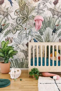 When Jimmy Cricket approached us to take care of the styling of her new wall paper, we could not wait to get started to create a vibrant setting. Cricket Wallpapers, A N Wallpaper, Kids Room, Home And Garden, Vibrant, Nursery, Tapestry, Live, Home Decor