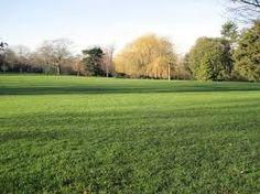Image result for parsloes park