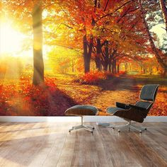 Wall Mural Beautiful Autumn Landscape/Scenery of Red Maple Large Wall Murals, Custom Wall Murals, Removable Wall Murals, Pine Tree Silhouette, Red Maple Tree, Wall Sticker Design, Yellow Tree, Snow Covered Trees, Tree Wall Decor