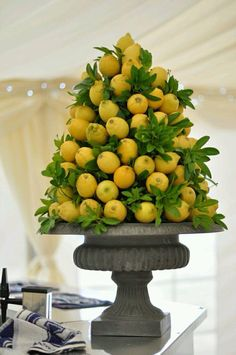 Fruit topiary
