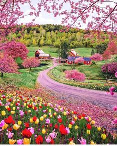 Woodstock is beautiful during the spring season . Woodstock is beautiful during the spring season . Beautiful Places To Travel, Wonderful Places, Cool Places To Visit, Beautiful World, Beautiful Gardens, Places To Go, Beautiful Farm, Amazing Places On Earth, Beautiful Eyes