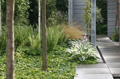 Trädgårdsstil Minimalistisk trädgård