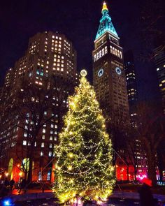 Madison Square Park Christmas Tree by @mickmicknyc by newyorkcityfeelings.com - The Best Photos and Videos of New York City including the Statue of Liberty Brooklyn Bridge Central Park Empire State Building Chrysler Building and other popular New York places and attractions.