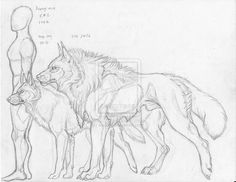 Cole size Scale by sioSIN.deviantart… on Cole size Scale by sioSIN.deviantart… on Animal Sketches, Animal Drawings, Cool Drawings, Drawing Sketches, Drawing Drawing, Deviantart Zeichnungen, Wolf Sketch, Arte Sketchbook, Creature Drawings