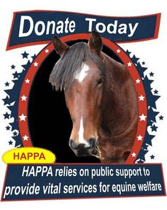 It is easy to help HAPPA. You can support us by giving a one off donation of any size. http://www.happa.org.uk/donate/