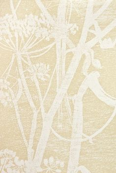 Cow Parsley Restyled Wallpaper Oat wallpaper with white cow parsley print. Cow Parsley, Feature Wallpaper, White Cow, Cole And Son, Texture, Contemporary, Sun Room, Ceilings, Painting