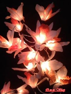 20 White - Orange Orchid Flower Fairy String Lights Wedding Party Floral Home Decor by OmmShop for $15.00