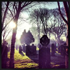 Daily tours of Glasnevin Cemetery are at 11.30am & 2.30pm