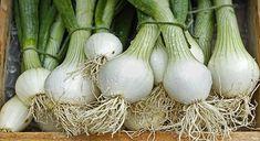 Bosui (groenten)