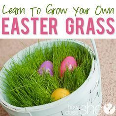 Grow Your Own Easter Basket Grass! This is one of the funnest Easter activities for your family! Kids love to watch it grow!
