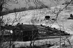 #hughes #melissa #rustic #barn #hughescountryroadsphotography