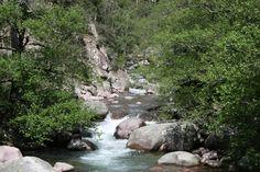 La forêt de Bonifato et sa rivière la Figarella, Calenzana, Balagne, Corse