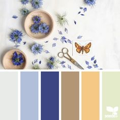 today's inspiration image for { color arranged } is by the talented @c_colli ... thank you Cristina for generously sharing your work in #SeedsColor !