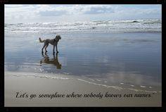 Cannon Beach Trip 2013