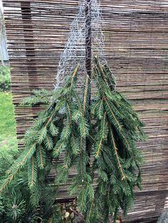 Rustic Christmas Crafts, Outside Christmas Decorations, Christmas Planters, Christmas Greenery, Diy Christmas Tree, Christmas Gnome, Christmas Centerpieces, Christmas Projects, Christmas Wreaths