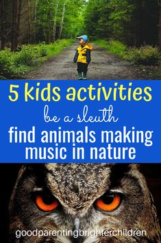 Be a sleuth—find animal music in nature. Here are 5 nature activities that include animals, art, music & movement, and beautiful forests and trees. Kids will be amazed at all the music they find hidden in nature! It's science, music & exercise combined! Music Activities For Kids, Movement Activities, Outdoor Activities For Kids, Nature Activities, Brain Activities, Music For Kids, Infant Activities, Preschool Music, Camping Activities
