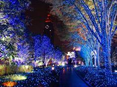http://www.prairielectric.com/images/christmas-lights-japan-street-art-street-free-online-best-best-by.jpg