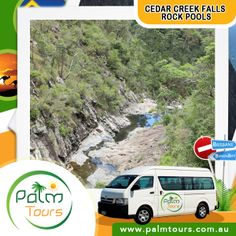 Cedar Creek Falls Rock Pools  With its spectacular cascades, waterfalls and rock pools. It is hard to describe the natural beauty of this spot!  Start planning your trip today, call us on 0499077053 or visit our website at www.palmtours.com.au.