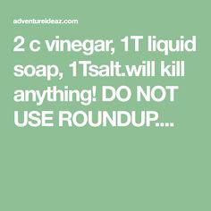 2 c vinegar, 1T liquid soap, 1Tsalt.will kill anything! DO NOT USE ROUNDUP....
