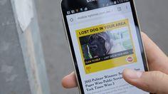 ¿Has perdido a tu perro? Gracias a la innovadora aplicación @Pedigree_Found , ya es posible encontrarlo #8tendencias