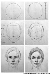Uplifting Learn To Draw Faces Ideas. Incredible Learn To Draw Faces Ideas. Drawing Heads, Human Drawing, Drawing Faces, Human Face Sketch, Shading Drawing, Drawing People Faces, Drawing Step, Drawing Art, Pencil Art Drawings